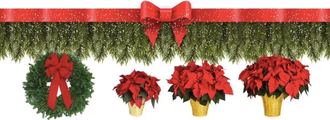 Wreaths Poinsettias