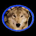 Logo - Hiawatha