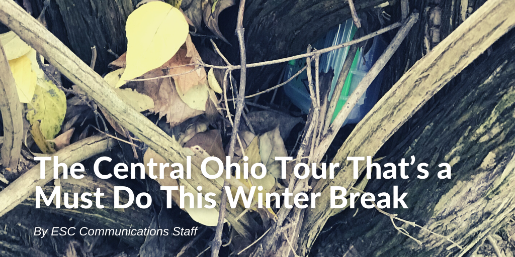 """A plastic box nestled amongst the limbs of a tree with the text """"The Central Ohio Tour That's a Must Do This Winter Break By ESC Communications Staff""""."""
