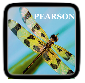 Pearson Realize Link and Icon