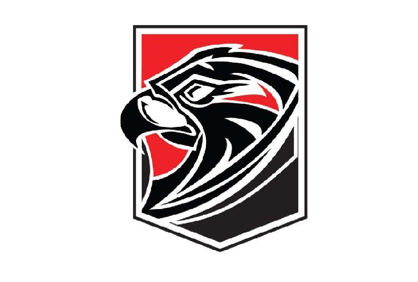 Falcon Shield